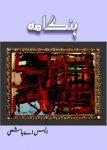 Tasweer (Painting) ka Hungama Crime Story by SA Hashmi