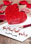 Her Dil Pe Likha Ik Nam Hai Urdu Romantic Novel by Nasir Hussain